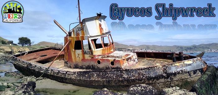 Cayucos Shipwreck